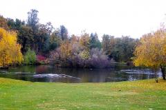 Lakeside-Lawn-Ironstone-Vineyards