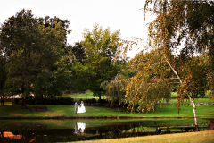 Lakeside-Lawn-Ironstone