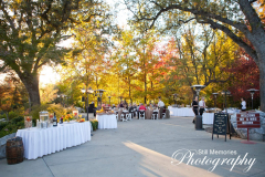 Reception in Murphys Rock Garden at Ironstone